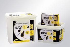 RAVIOX